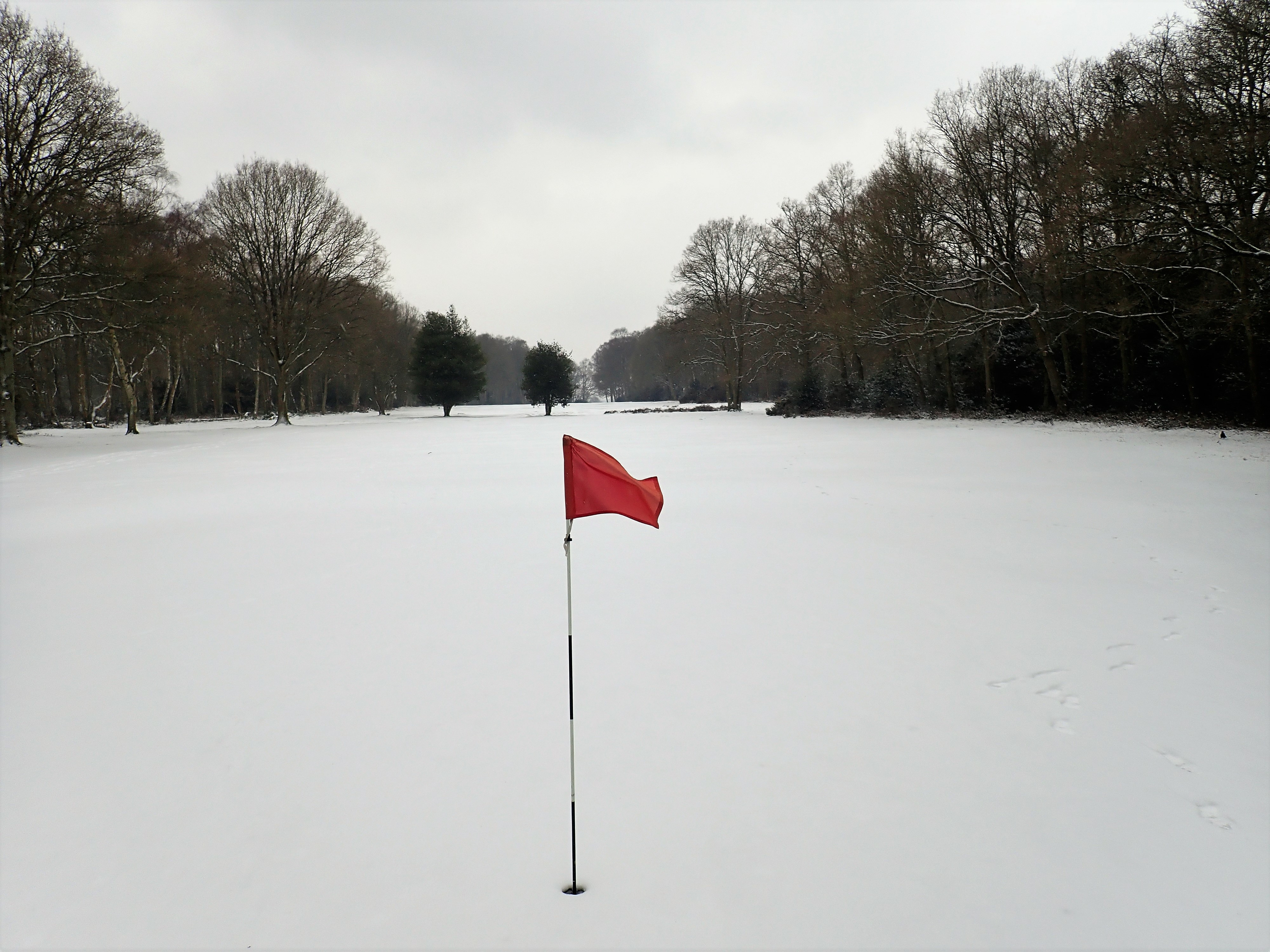 Golf Course in Snow